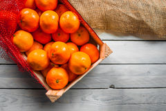Clementines in a box Stock Photography