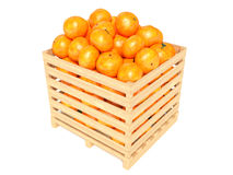 Clementines in container. Isolated against white background Royalty Free Stock Images