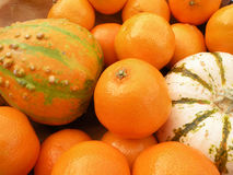 Clementines and decorative pumpkins. Detail of clementines and decorative pumpkins in a wooden bowl Stock Photo