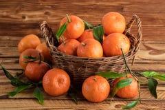 Clementines eller organiska frukter för mandarines på ett gammalt trä Royaltyfri Fotografi