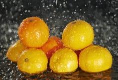 Clementines regnar in Fotografering för Bildbyråer