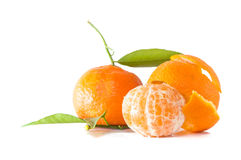 Clementines isolated. With leaves on white background Royalty Free Stock Photography