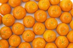 Clementines lade ut sidan - förbi - sidan Royaltyfri Foto