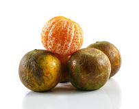 Clementines from low perspective  on white. Royalty Free Stock Images