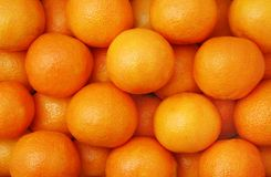 Clementines (mandarin oranges) Royalty Free Stock Image