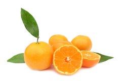 Clementines mandarin oranges perfect Stock Photo