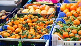 Clementines in a market. Clementines for sale in a market Royalty Free Stock Photo