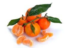 Clementines med segment med droppe Arkivbilder