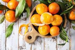 Clementines med sidor Fotografering för Bildbyråer
