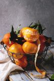 Clementines med sidor Arkivbild