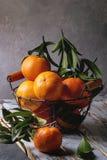 Clementines med sidor Arkivfoton
