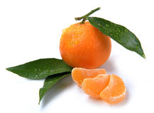 Clementines with segments with drop Stock Image