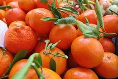 Clementines som är till salu i supermarket, Spanien Arkivbild