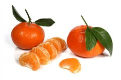 Clementines or tangerines with green leaves on a white background. stock images