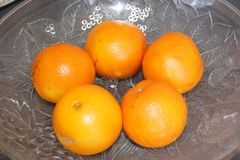 Clementines - View Sight of top royalty free stock photo