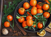 Clementines winter fruits with spices and decorative fir tree br Royalty Free Stock Images