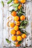 Clementines z liśćmi Fotografia Stock