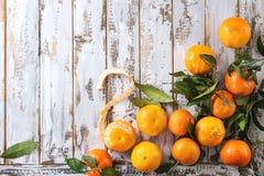 Clementines z liśćmi Obrazy Royalty Free