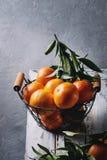 Clementines z liśćmi Zdjęcia Royalty Free