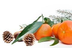 Clementines z liściem zdjęcia stock