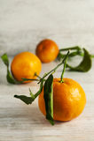 Clemetine mandarin with leaves. Clementine mandarines with leaves on gray wooden background Royalty Free Stock Image