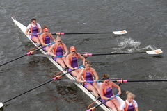Clemson University races in the Head of Charles Regatta Women's Championship Eights Royalty Free Stock Image
