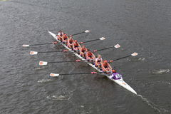 Clemson University races in the Head of Charles Regatta Women's Championship Eights Stock Images