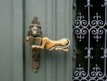 Clench. A golden lion clench on a door stock images