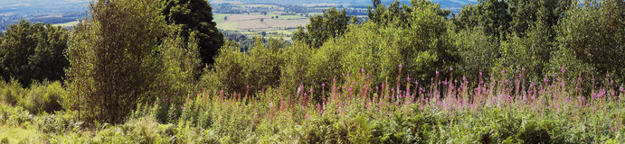 Clent hills Royalty Free Stock Photos