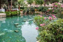 Cleopatra ` s basen w Turcja - antyczna przyjemność Zdjęcia Royalty Free