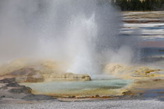 Clepsydra Geyser mouth, Lower Geyser Basin of Yellowstone National Park Stock Images
