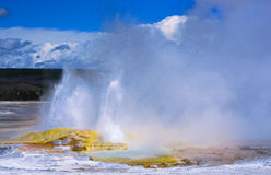 Clepsydra Geyser in Yellowstone Stock Photography