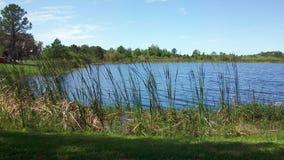 Clermont Флорида Стоковое Фото