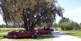Clermont Florida Royalty-vrije Stock Fotografie