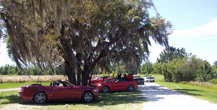 Clermont Florida Royalty Free Stock Photography