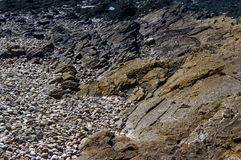 Clevedon geologi Arkivbilder