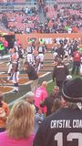 Cleveland Browns Game  Field Stock Images