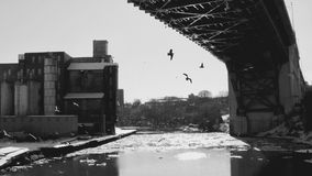 The icy winter and birds flying over the Cuyahoga River- CLEVELAND - OHIO - USA. Cleveland is a major city in Ohio on the shores of Lake Erie. Landmarks dating royalty free stock images