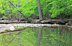 The Cleveland Metroparks Royalty Free Stock Photography