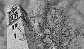 Cleveland Ohio Uniwersytecki okrąg zdjęcia royalty free