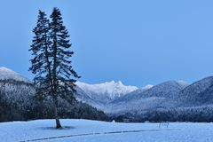 Cleveland Park with Lions Mountains, North Vancouer Royalty Free Stock Photo