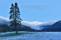 Cleveland Park with Lions Mountains, North Vancouer Stock Photography