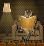 Tales for kittens royalty free stock image
