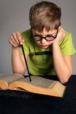 Clever little student. Reading a book Royalty Free Stock Photo