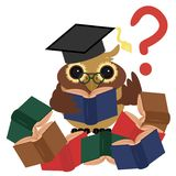 Clever owl with books stock photography