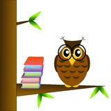 A clever owl spectacled sits on a tree with books Stock Photography