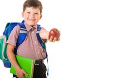 Clever schoolchild Stock Photography
