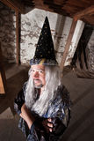 Clever Wizard Royalty Free Stock Photo
