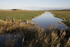 Cley marshes nature reserve, Stock Photos