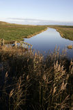 Cley marshes nature reserve, Stock Images